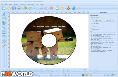 RonyaSoft CD DVD Label Maker 3.01.12