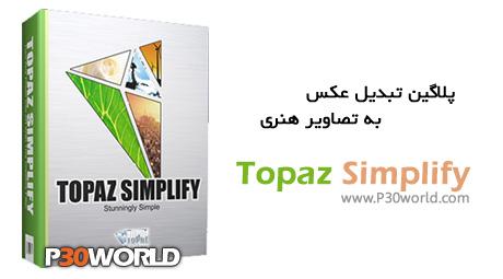 Topaz-Simplify