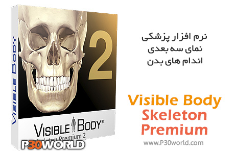 Visible-Body-Skeleton-Premium