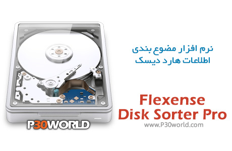 Flexense-Disk-Sorter-Pro