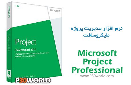 Microsoft-Project-Professional
