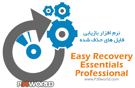 Easy-Recovery-Essentials-Professional