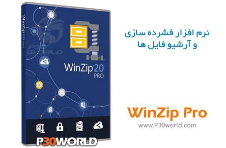 WinZip-Pro-20