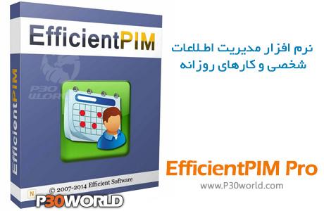 EfficientPIM-Pro