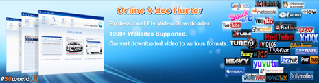 دانلود کلیپ های آنلاین FLV از Toutube, Myspace و .. توسط GSK Studio Online Video Hunter Professional v2.4