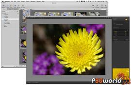 Nik Software Viveza v2.00.2.2358 – پلاگین حرفه ای کنترل رنگ و نور بر روی تصاویر